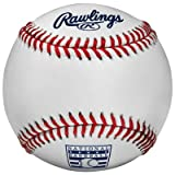 Rawlings Official Hall of Fame Game Ball ROMLBHOF [Misc.]