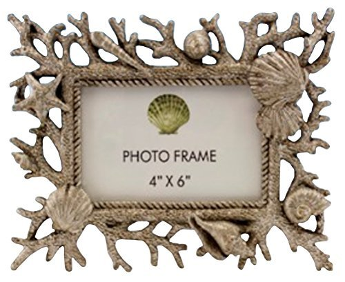 Gold Rub Staghorn Coral and Seashell 4 Inches X 6 Inches Photo Frame, Horizontal or - Sea Frame Shell