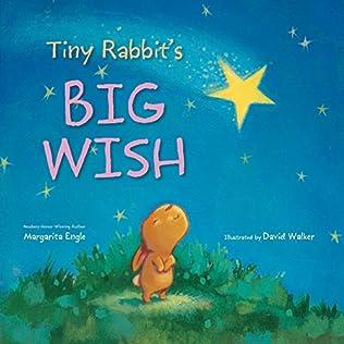 book cover of Tiny Rabbit\'s Big Wish