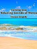 Calming Seas: Relaxing Sounds of Waves, Ocean Sounds