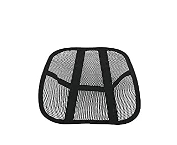 Travelon Cool Mesh Back Support System 1 ea
