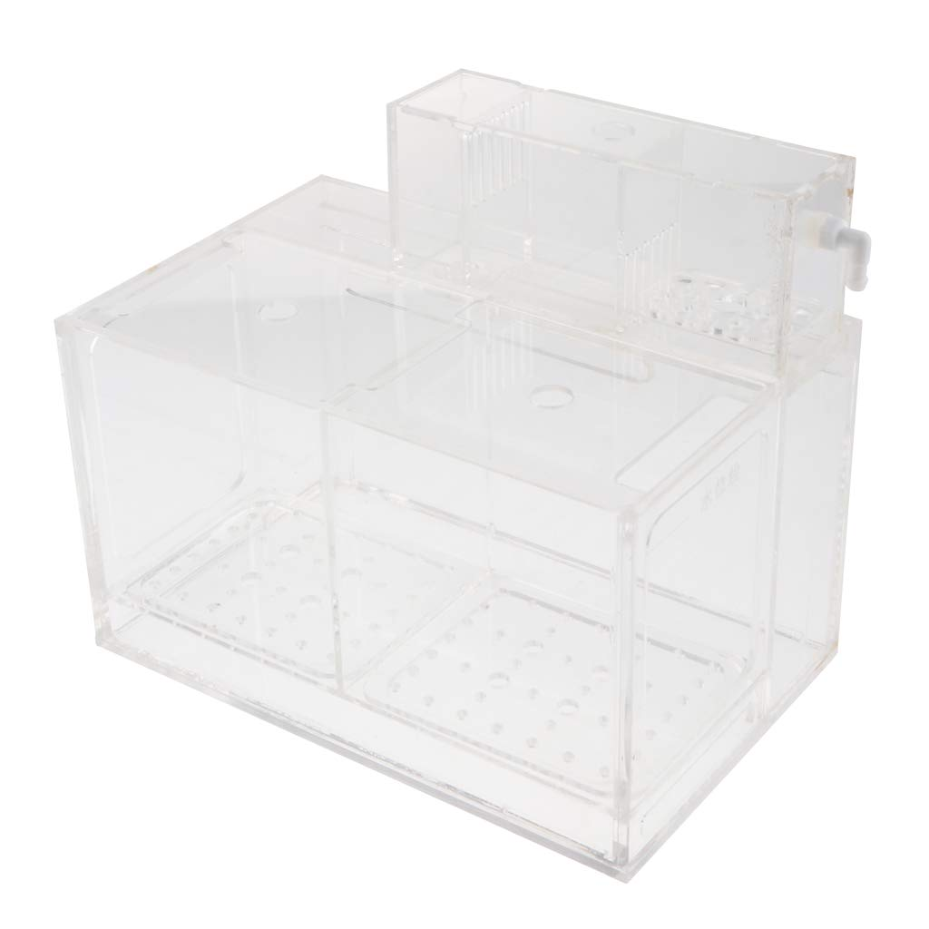 Kesoto Aquarium Hatchery Fish Breeding Box Tank Breeder Multi Grid Isolation Box - 2 Grid by Kesoto (Image #1)