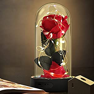 Beauty and The Beast Rose,Enchanted Red Silk Rose Lamp That Lasts Forever with LED Fairy String Lights,Fallen Petals and ABS Base in A Glass Dome,Best Gift for Her