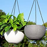Livzing Flower Pot Hanging Basket With Hook Chain For Home Gardener Office Balcony Grower Planter - Pack of 2 - Assorted Color