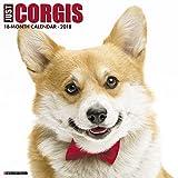 Just Corgis 2018 Wall Calendar (Dog Breed Calendar) (Multilingual Edition)