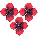 obmwang-3000Pcs-Dark-Silk-Rose-Petals-Wedding-Flower-Decoration-Artificial-Red-Rose-Flower-Petals-for-Wedding-Party-Favors-Decoration-and-Vase-Home-Decor-Wedding-Bridal-Decoration3000pcs-Red