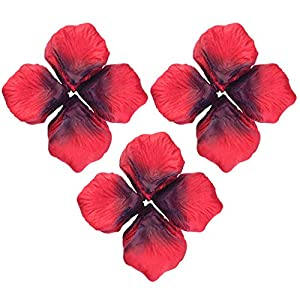 obmwang 3000Pcs Dark Silk Rose Petals Wedding Flower Decoration Artificial Red Rose Flower Petals for Wedding Party Favors Decoration and Vase Home Decor Wedding Bridal Decoration(3000pcs Red) 5