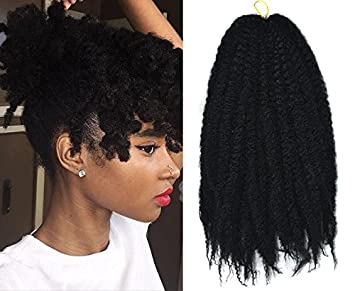 Amazon Com Marley Afro Braid Hair Extensions Kinky Curly Bulk