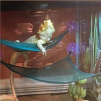 Amazon Com Zoo Med Mesh Reptile Hammock 17 5 Inch
