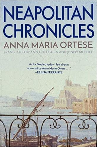 Image result for Neapolitan Chronicles by Anna Maria Ortese