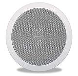 """Polk Audio RC6s In-Ceiling 6.5"""" Stereo Speaker"""