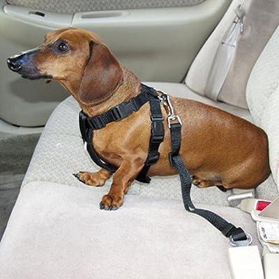 Coolcase Arnés de retención para perro para cinturón de seguridad ...