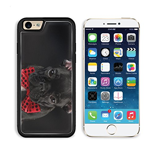 MSD Premium Apple iPhone 6 iPhone 6S Aluminum Backplate Bumper Snap Case IMAGE ID: 8085603 french bulldog wearing red bowtie on black (Frenchie Costumes)