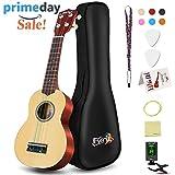 Soprano Rainbow Ukulele Beginner Pack-21 Inch w/Gig Bag Fast Learn Songbook Digital Tuner All in One Kit