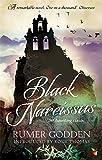 Black Narcissus (VMC) (Virago Modern Classics)