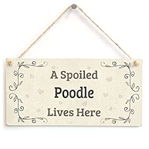 "Meijiafei A Spoiled Poodle Lives Here - Lovely Home Accessory Gift Sign for Dog Owners 10""x5"" 9"