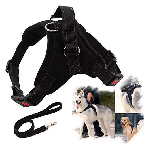 EAST-BIRD No Pull Dog Harness, Breathable Adjustable Comfort, Free Leash Included, for Small Medium Large Dog, Best for Training Pulling Walking (L, ()