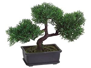 9 artifical cedar bonsai in rectangular brown for Allstate floral and craft