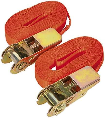 Sealey Td08045e Selbstsicherndem Spanngurt Mit Ratsche Laden Test 25 Mm X 4 5 M 800 Kg Kapazität Baumarkt