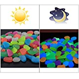 Solar 400 Pcs Colorful Glowing Garden Resin Pebbles,Garden Decor Glowing Stones Luminous Rocks for Outdoor Walkway Driveway,Luminous Stones for Plants Pot, Fish Tank,Swimming Pool etc