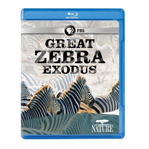 Nature: Great Zebra Exodus [Blu-ray]
