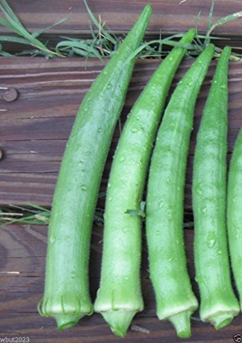 Nombo Giant Philippine Okra ,Bhindi , Gumbo , Extra-long lady's finger -Heirloom(100 Seeds) from Unknown