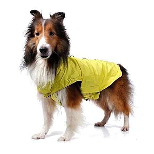 - ThinkPet Outdoor Waterproof Reflective Dog Winter Jacket, Dog Rain Coats, Fleece Dog Sweater, M, Yellow