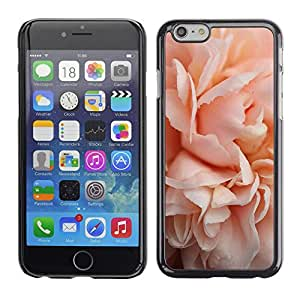 Caucho caso de Shell duro de la cubierta de accesorios de protección BY RAYDREAMMM - Apple iPhone 6 Plus 5.5 - Pink Rose Blossom Close-Up