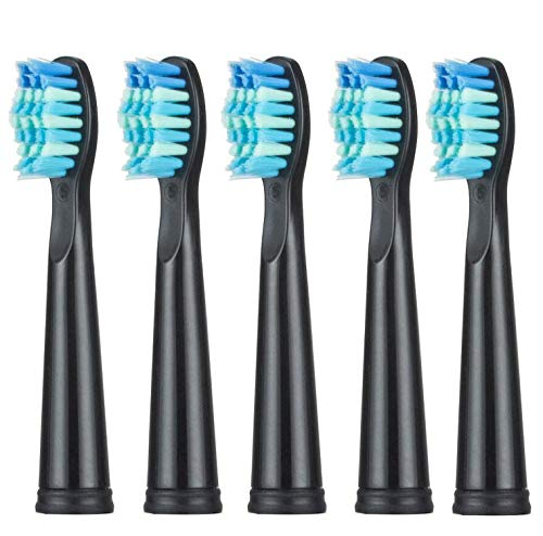 Amazon.com: Sonic Electric Toothbrush USB Charge Rechargeable Tooth Brushes Value Spree Mysterious Birthday Gift Surprise Christmas Day,5 Brush Head-Black: ...
