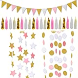 LeeSky Party Decoration Supplies,Circle Dots Hanging Garland,Tissue Tassel Garland,Vintage Style Pennant Banner,Twinkle Star Banners for Party Decorations Supplies (Glitter Gold and Pink and White)