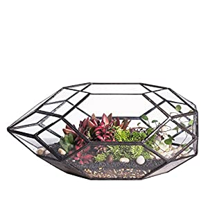 Large Handmade Irregular Polyhedral Geometric Glass Terrarium Planter Indoor Air Plants Holder Window Balcony Display Box Succulent Flower Pot DIY Centerpiece for Wedding Table Garden Decor 11inches 96