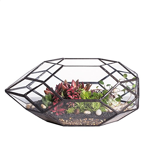 Large Handmade Irregular Polyhedral Geometric Glass Terrarium Planter Indoor Air Plants Holder Window Balcony Display Box Succulent Flower Pot DIY Centerpiece for Wedding Table Garden Decor 11inches