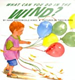 What Can You Do in the Wind?, Anna H. Grossnickle, 0688160794