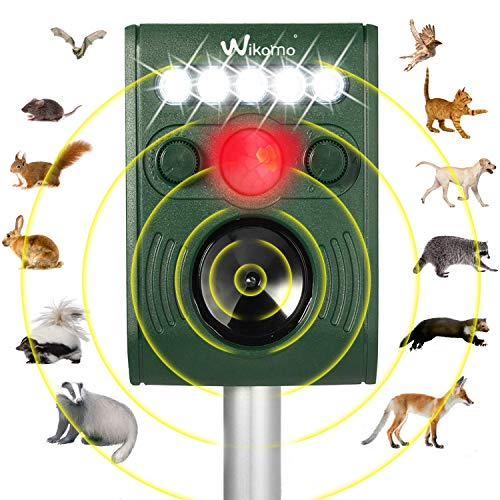 Solar Powered Animal Lights in US - 6