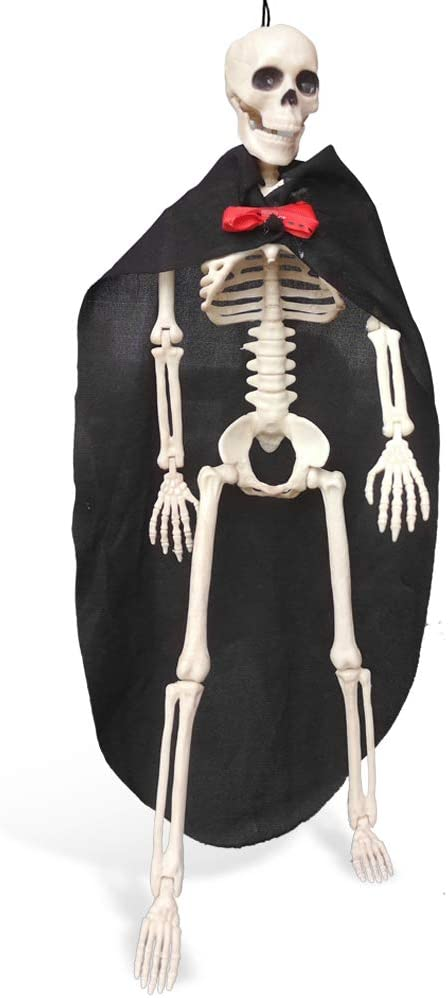 GESCHOK Standing Skeleton Day of the Dead Couple Groom Full Body Realistic Human Bones with Posable Joints for Halloween Decoration 15.7 in 40cm
