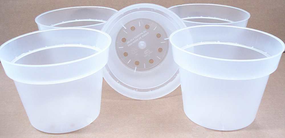 Clear Plastic Pot for Orchids 6 1/2 inch Diameter - Quantity 5
