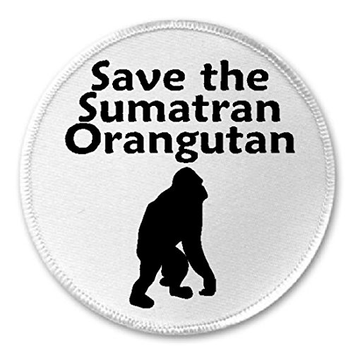 (Save The Sumatran Orangutan - 3