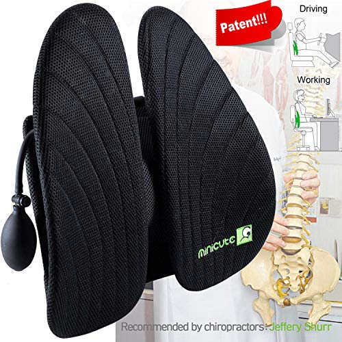 LONG FIT Lumbar Support,Back Cushion Inflated,Adjustable Backrest with 3D Mesh Breathable Cover Lower Middle Back Pain Relief Orthopedic Support for Car Seat,Computer Office Chair and Posture Improve