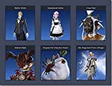Final Fantasy XIV Summer DLC Promotion Codes (Butler Attire, Maid Attire, Chocobo Mount, Crag Mask, Inferno Mask, 99X Magicked Prism Wings)