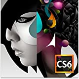 Software : Adobe Design Standard CS6 - Windows