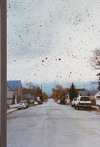 Taiyo Onorato & Nico Krebs: The Great Unreal by Nico Krebs Taiyo Onorato (2009-01-01)