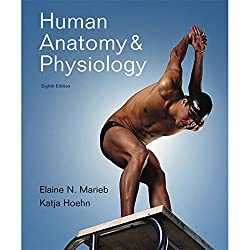 VangoNotes for Human Anatomy & Physiology, 8/e