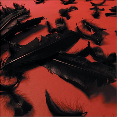 Price comparison product image Black Feather Wings