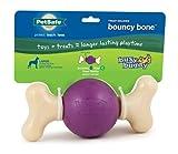 PetSafe Busy Buddy Bouncy Bone Dog Toy, Large, My Pet Supplies