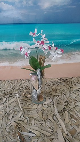 Orchid Exotic Silk Flower Arrangement in Glass Vase filled with Seashells & Driftwood -