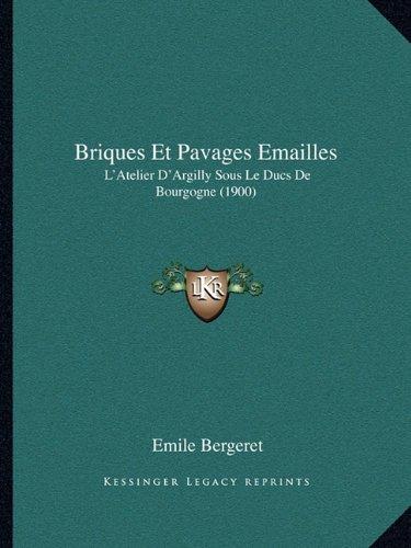 Briques Et Pavages Emailles: L