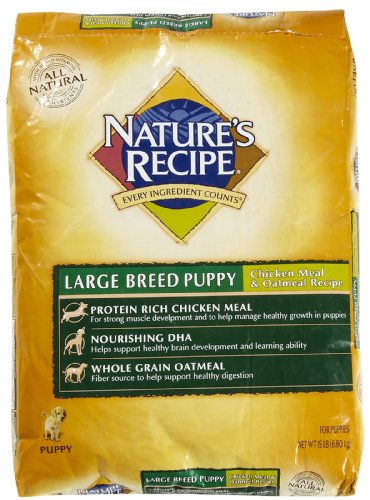 Nature's Recipe Large Breed Puppy Dry Dog, 15-Pound