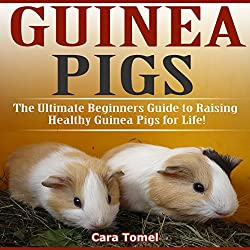 Guinea Pigs: The Ultimate Beginner's Guide to Raising Healthy Guinea Pigs for Life!