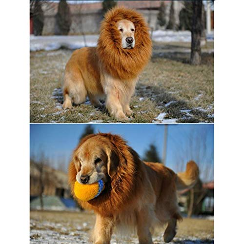 Disfraz de Mascota Divertida Lion Mane Peluca Peluca con Cola para Labrador Golden Christmas Disfraz de Fiesta de Halloween Marrón: Amazon.es: Juguetes y ...