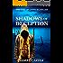 Shadows of Deception: A Romantic Thriller Novel
